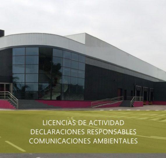 Consultoría de actividades